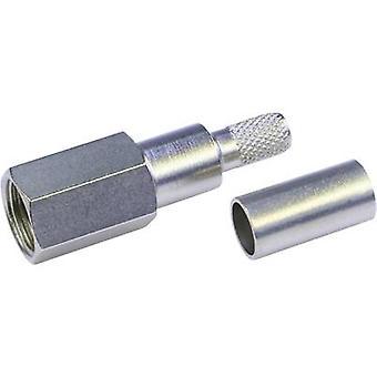 Conector FME, recto 50 Ω Telegärtner J01700A0006 1 PC