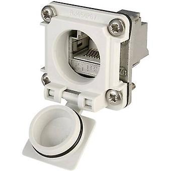 Conjunto de brida STX V6 RJ45 opción conector 6, número de pernos de montaje: 8P8C J00020A0483 luz gris Telegärtner J00020A0483 1 PC