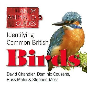 Identifying Common British Birds (Handy Petcare Guides)