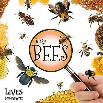 Busy Bees (The Lives of Minibeasts)