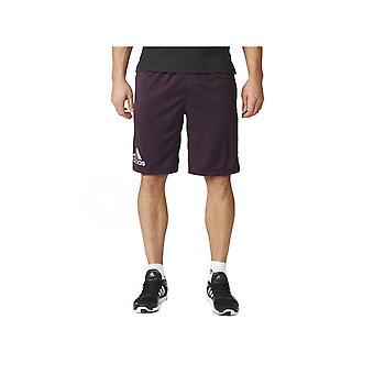 Adidas Climachill AJ0980 træning hele året mænd bukser