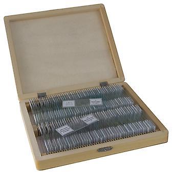BRESSER Preparazioni permanenti 100 pezzi/scatola
