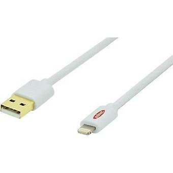 iPad/iPhone/iPod Charger lead/Data cable [1x USB 2.0 connector A - 1x Apple Dock lightning p