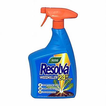 RESOLVA 24h Rtu mit Glyphosat & wird 1ltr (Packung mit 6)