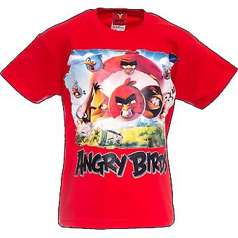 Angry Birds Movie | Official Angry Birds | Kids T-Shirt | Age 12-13