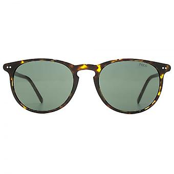 Polo Ralph Lauren Classic Keyhole Round Sunglasses In Havana
