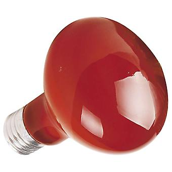 Ica Infrared bulb 75W (Reptiles , Lighting , Light Bulbs)
