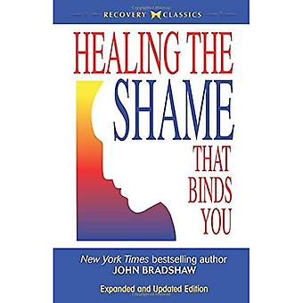 Healing the Shame That Binds You (Recovery Classics) (Recovery Classics)