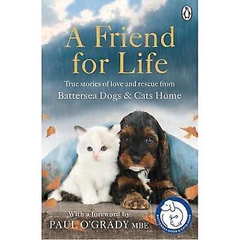 Un ami pour la vie (Battersea Dogs & maison chats)