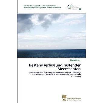 Bestandserfassung rastender Meeresenten by Bickel Malte
