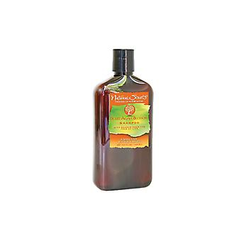 Bio Groom Natural Scents Desert Agave Blossom Shampoo 428ml