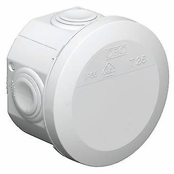 Junction box (Ø x H) 80 mm x 51 mm OBO Bettermann 2007029 Light