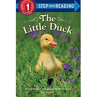 The Little Duck (Step Into Reading: A Step 1 Book)