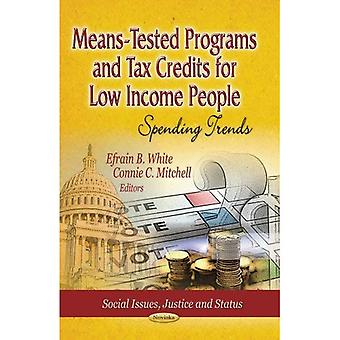 Means-Tested Programs and Tax Credits for Low Income People
