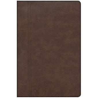 CSB Restoration Bible, Brown Leathertouch: Embracing God's Word in Difficult Seasons