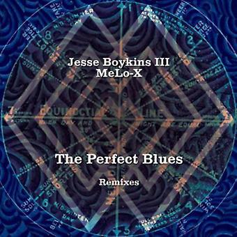 Jesse Boykins III - perfekt Blues Remixes 10' [Vinyl] USA importerer