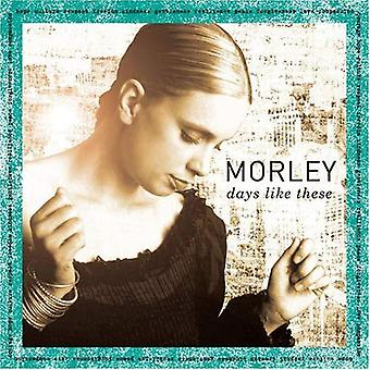 Morley - dage som denne [CD] USA import