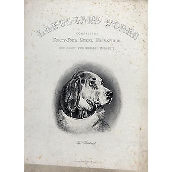 Edwin Landseer - A bloodhound with a collar Poster Print Giclee