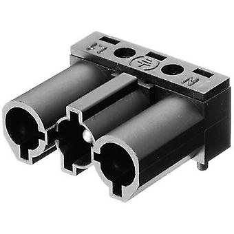 Mains connector Series (mains connectors) AC Plug, right angle