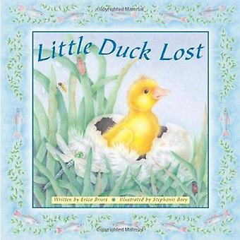 Little Duck Lost by Erica Briers - Stephanie Boey - 9781848772670 Book