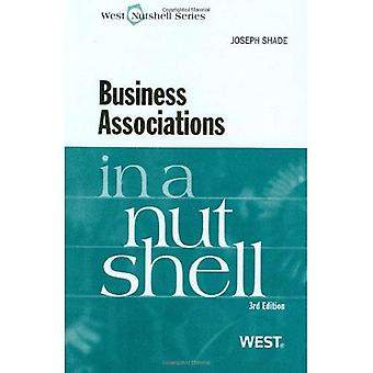 Business Associations in a Nutshell, 3d (Nutshell Series)