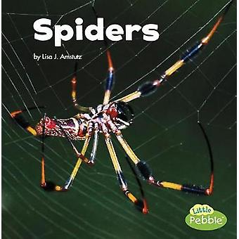 Spiders by Lisa J Amstutz - 9781515778264 Book