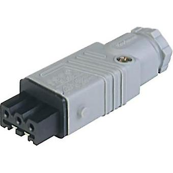 Mains connector ATT.LOV.SERIES_POWERCONNECTORS STAK Socket, straight Total number of pins: 3 + PE 16 A Grey Hirschmann