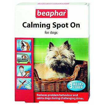 Beaphar hond kalmerende plek op 3 pipetten (Pack van 6)