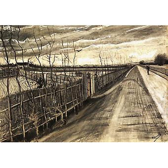 Vincent Van Gogh - Country Road, 1890 Poster Print Giclee