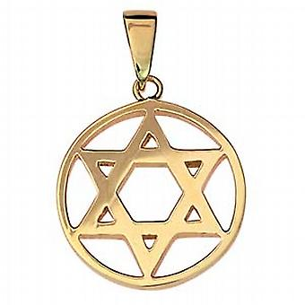 9ct Gold 25mm plain Star of David in circle Pendant