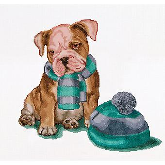 It's Cold Outside On Aida Counted Cross Stitch Kit-12.25
