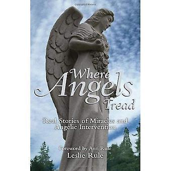 Onde os anjos do piso: Histórias reais de milagres e intervenção angelical