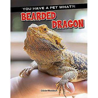 Bearded Dragon (You Have a� Pet What?)