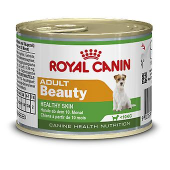 Royal Canin Mini Adult Beauty (Dogs , Dog Food , Wet Food)