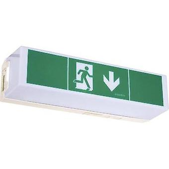 Escape route lighting Ceiling surface-mount, Wall surface-mount B-SAFETY BR 565 030