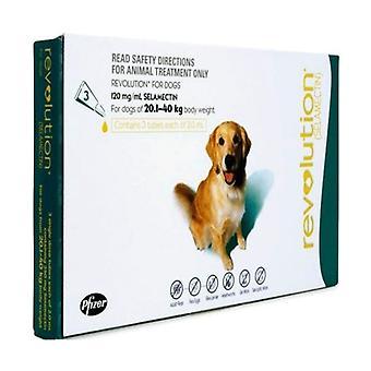 Revolusjon (Blågrønn) for hundene 20.1-40kg(40.1-85lbs), 6 Pack