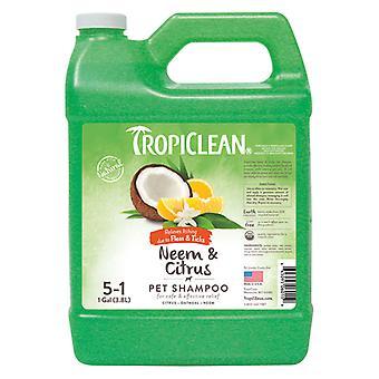 Tc Neem And Citrus Shampoo 3.8L