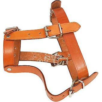 Hermanos Gómez Medium Leather Dog Muzzle (Dogs , Collars, Leads and Harnesses , Muzzles)