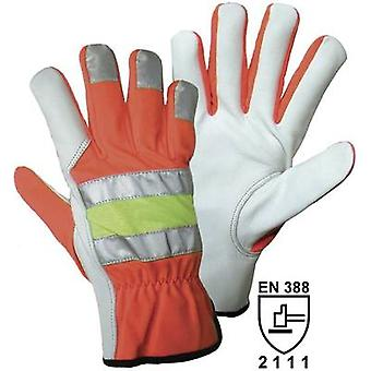 Griffy 1709 Size (gloves): 10, XL