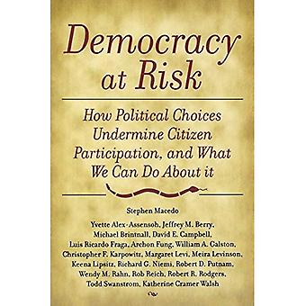 Democracy at Risk: Toward a Political Science of Citizenship