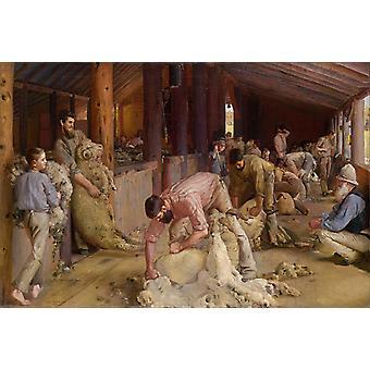 Shearing the rams,Tom roberts,60x40cm