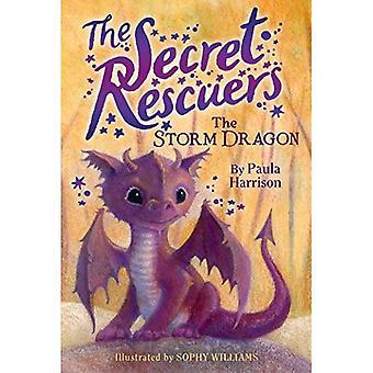 The Storm Dragon (Secret Rescuers)