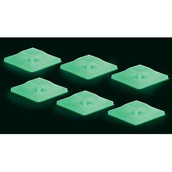Cable mount 4x thread Green (long luminescence) Conrad Components 546681 50 pc(s)