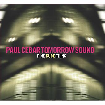Cebar, Paul morgen Sound - onbeleefd fijn [Vinyl] USA import