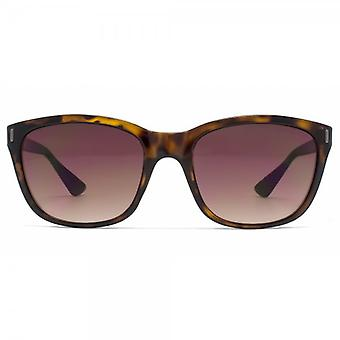 French Connection Retro Style Sunglasses In Tortoiseshell