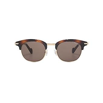 Moncler Geometric Brow Line Sunglasses In Dark Havana