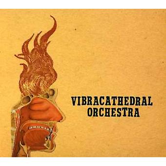 Vibracathedral Orchestra - Wisdom Thunderbolt [CD] USA import