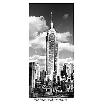 Impressão de Poster do Empire State Building por Henri Silberman (9 x 19)