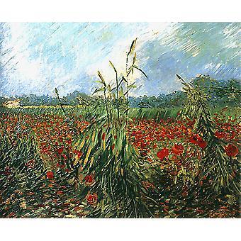 Зеленые колосья пшеницы, Винсент Ван Гог, 65x54cm