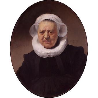Retrato de un ochenta, Rembrandt Harmenszoon van Rijn, 68.7 x 53,8 cm
